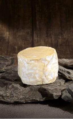 Camembert Bertrand