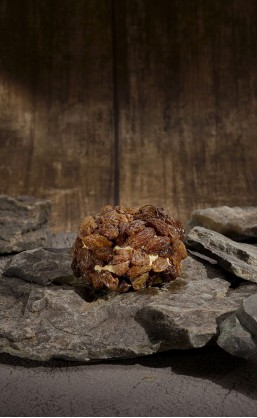 Régal de bourgogne aux raisins 110g