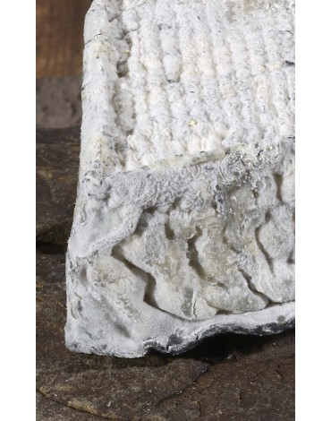 Fromage de Troyes aux Herbes 250g