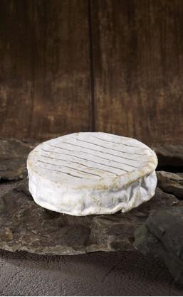 Camembert de brebis